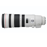 Canon EF 200-400/4 L IS USM Extender 1,4x